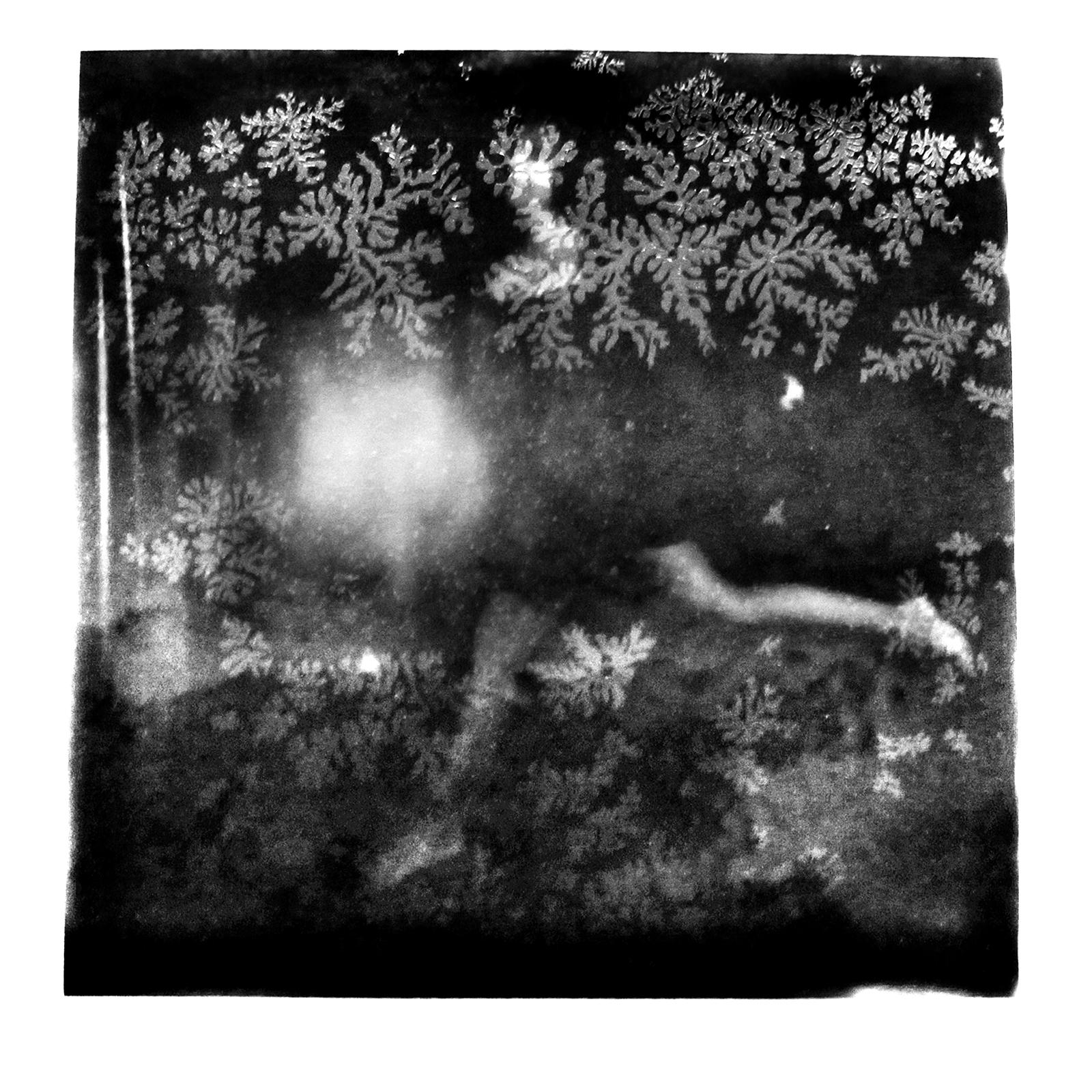©Ricardo Reis - Polaroids