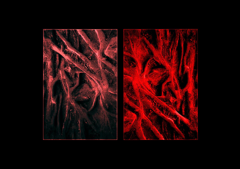 ©Yas Crawford - Blood Flow