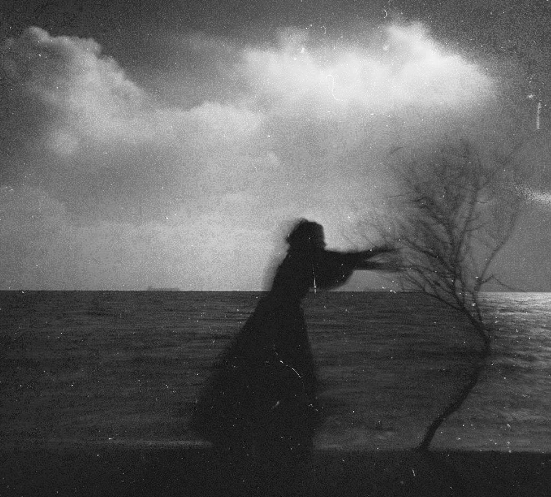 ©Yulia Shibirkina - #miraclegraphicarts