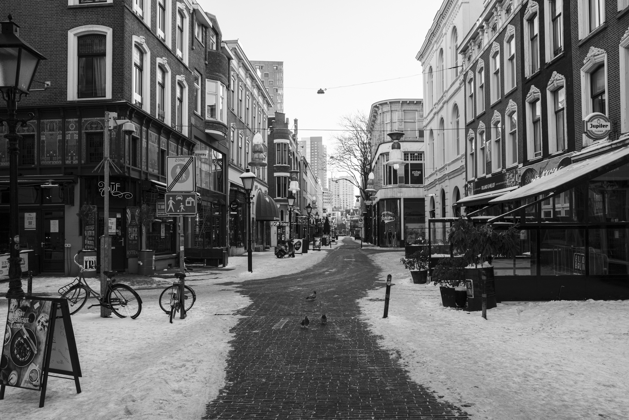 © Peter Janssen (The Netherlands) | Silence has taken over