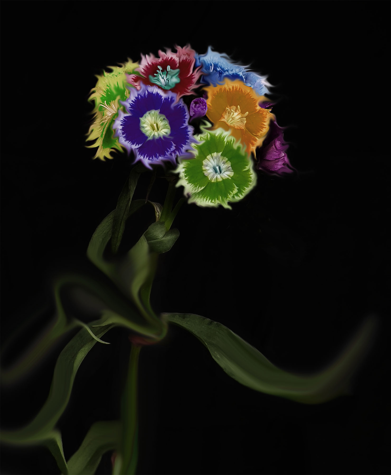 © Ilar Gunilla Persson | Power Flower