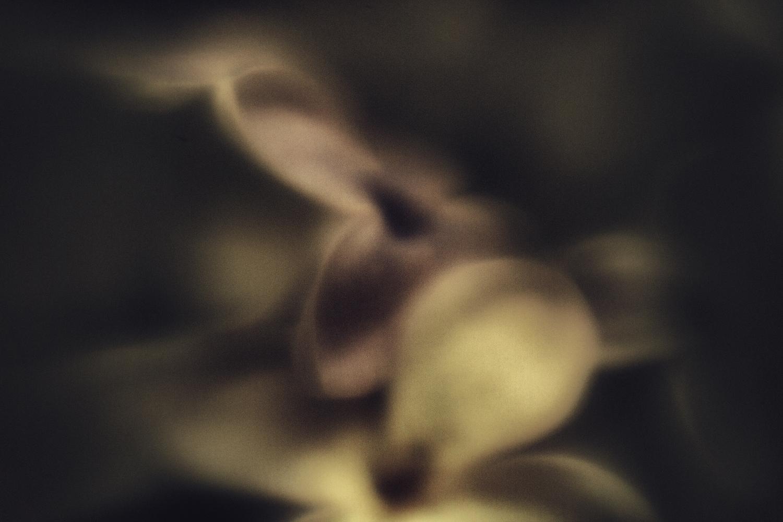 © Fulden Gülbay | Beyond