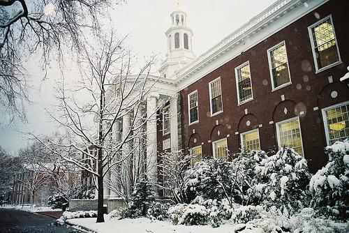 hbs-snow2