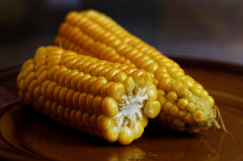 corn-on-the-cob-932857_960_720