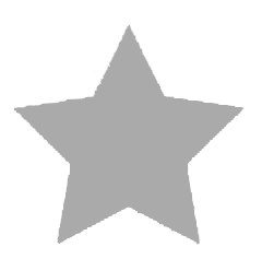 gray star icon