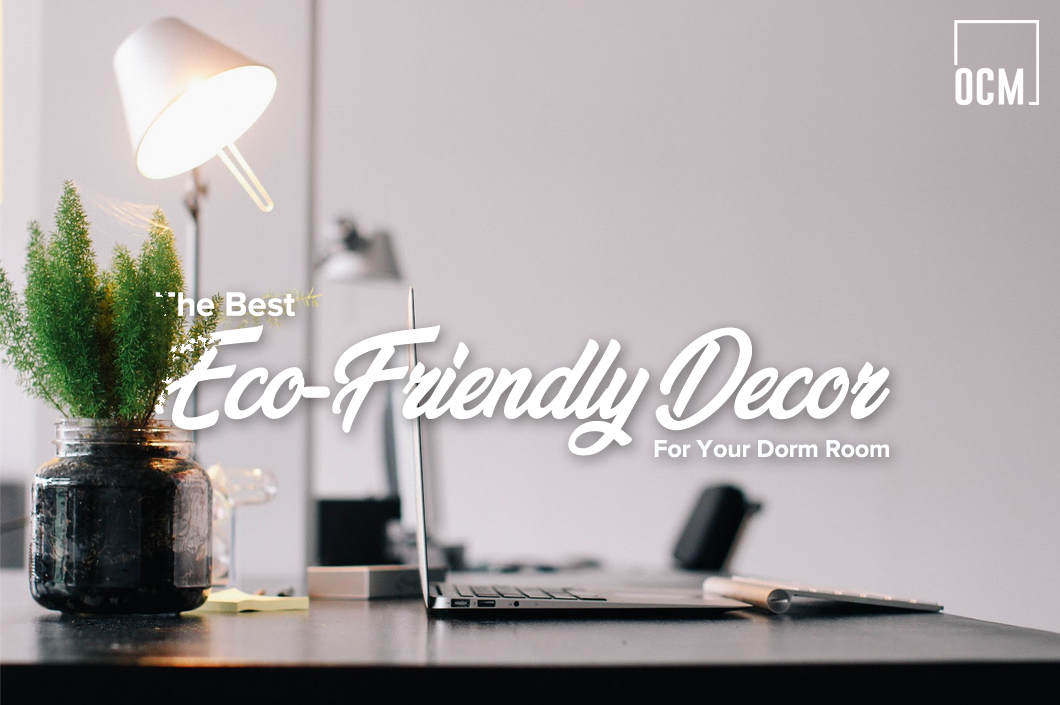 The Best Eco-Friendly Decor For Your Dorm Room