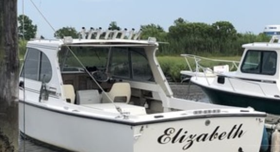 fishing boat rental stone harbor