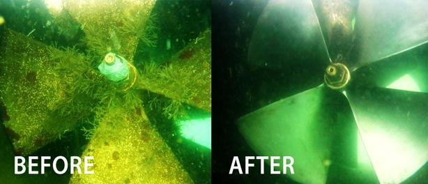 boat hull scraper
