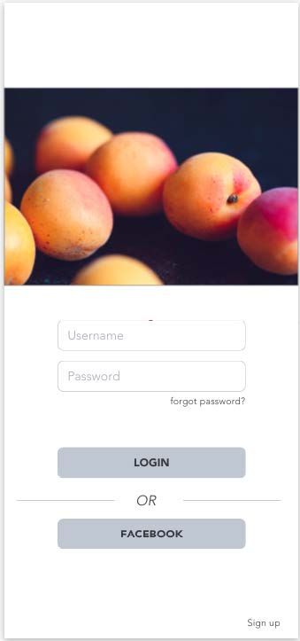 medium fidelity wireframe login