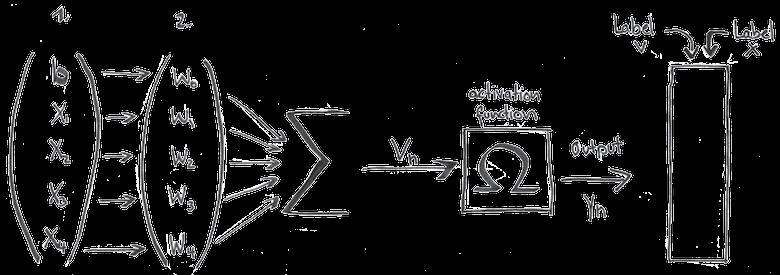 Formel mit Gewichten, Activation und Label bei einem Neuronalen Netz
