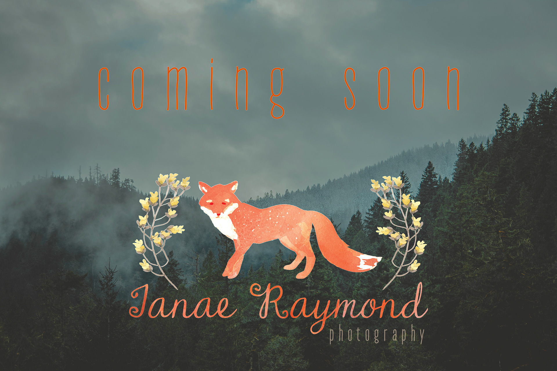 Logo for Janae Raymond Photography