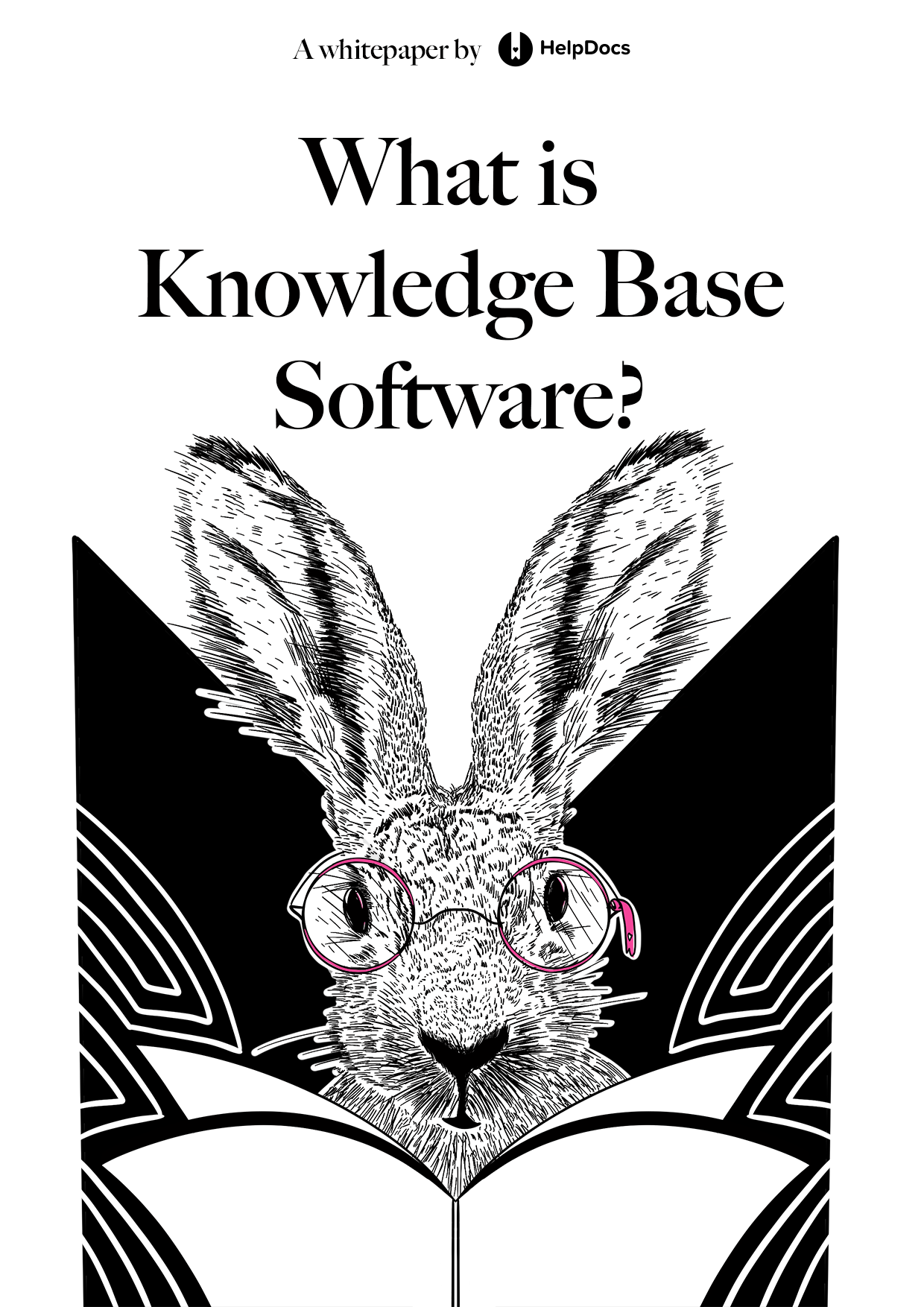 What Is Knowledge Base Software?