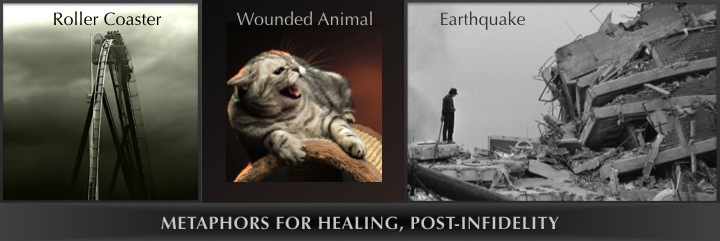 metaphors for healing, post-infidelity: roller coaster, wounded animal, earthquake