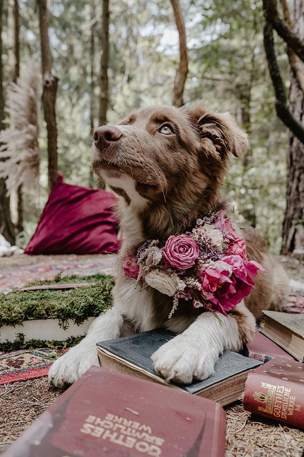 Claudias Blumenzauber | Blumen für eure Hochzeit