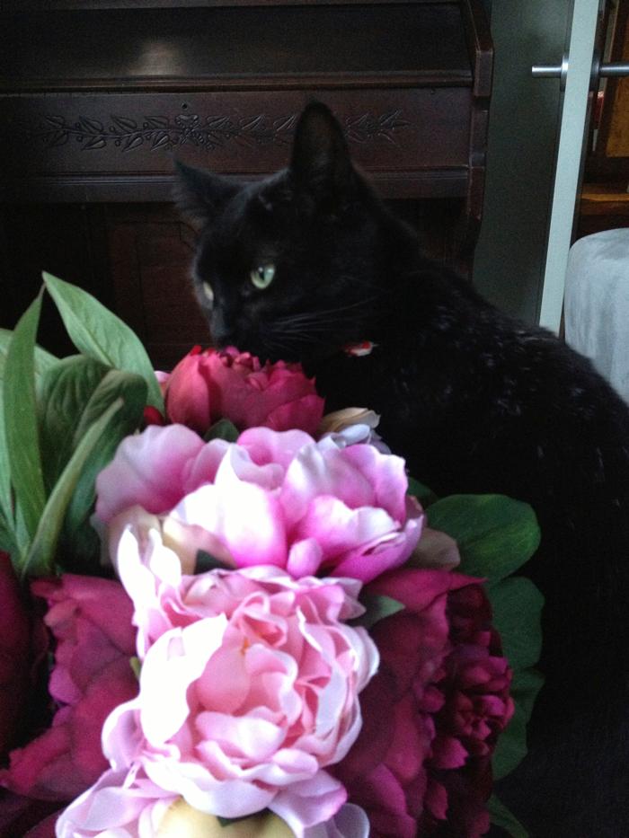 Rosie-smells-flowers.png