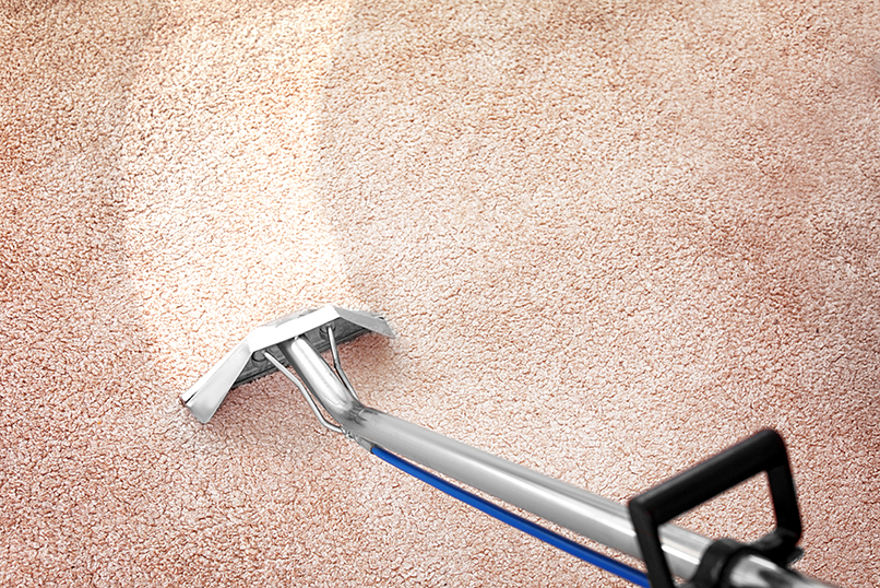 carpet cleaning in situ
