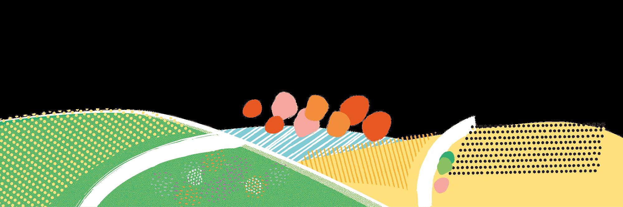 Un paysage de collines et de champs