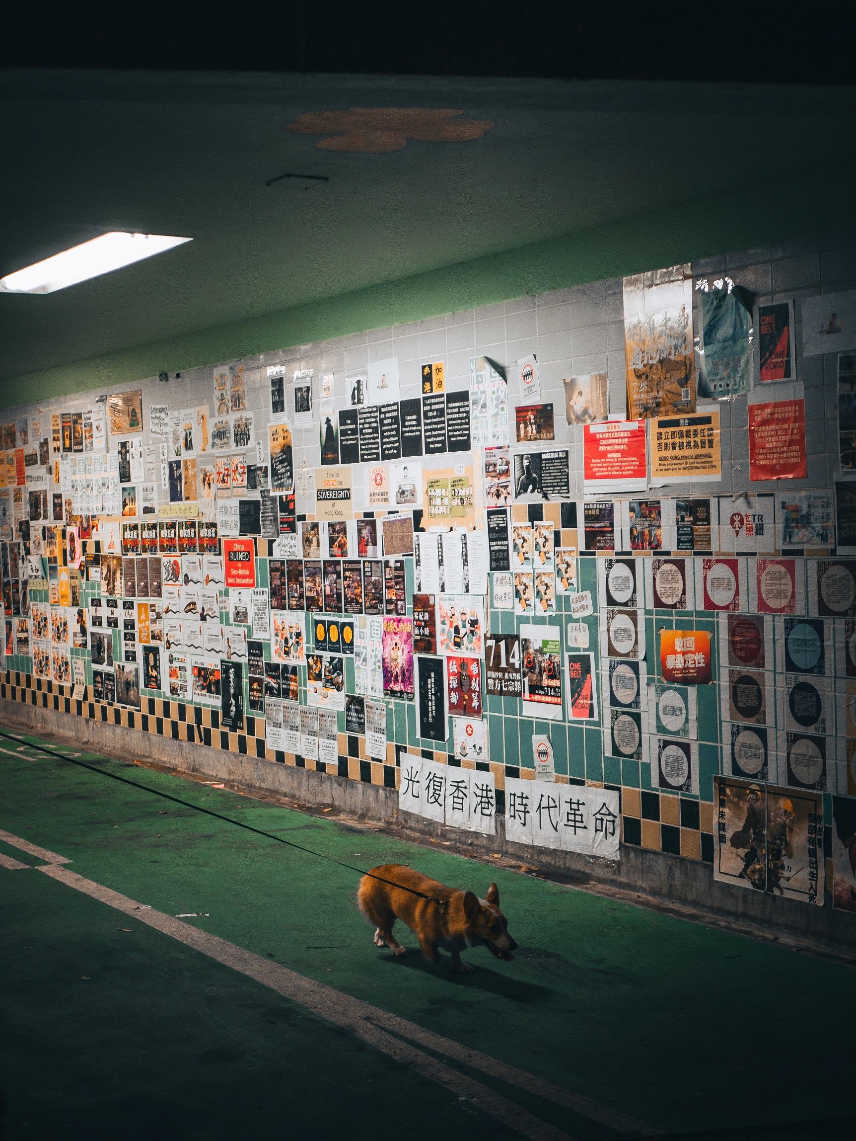 Lennon Wall in Tiu Keng Wan, Hong Kong