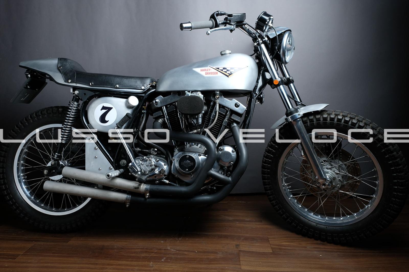 Harley Davidson Flat track special