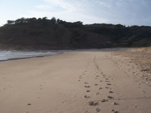 footprints-in-sand-at-grassy-head-beach