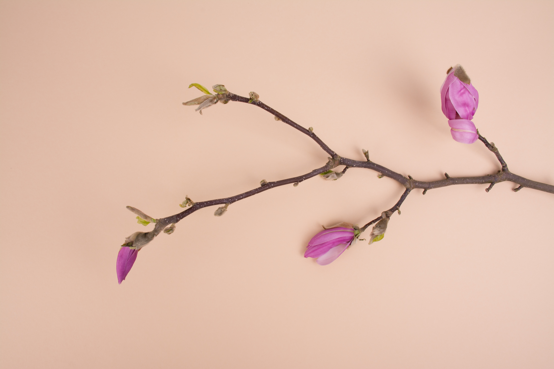 Work process flower