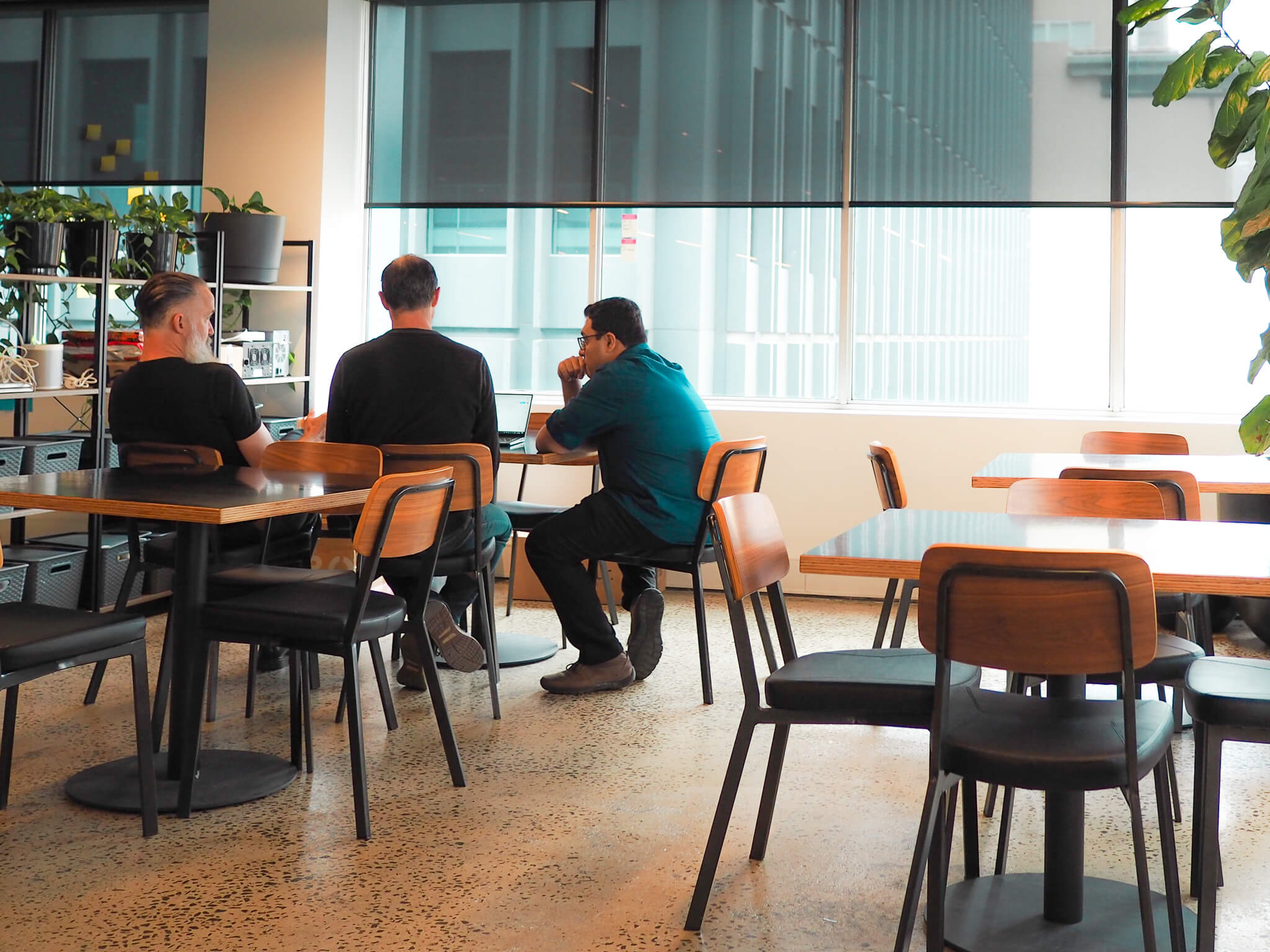 Business conversation, melbourne office, office plants, office sitting area, adults talking, business analyst, product owner, technical discussion, work colleagues, strategy consulting, technology consulting