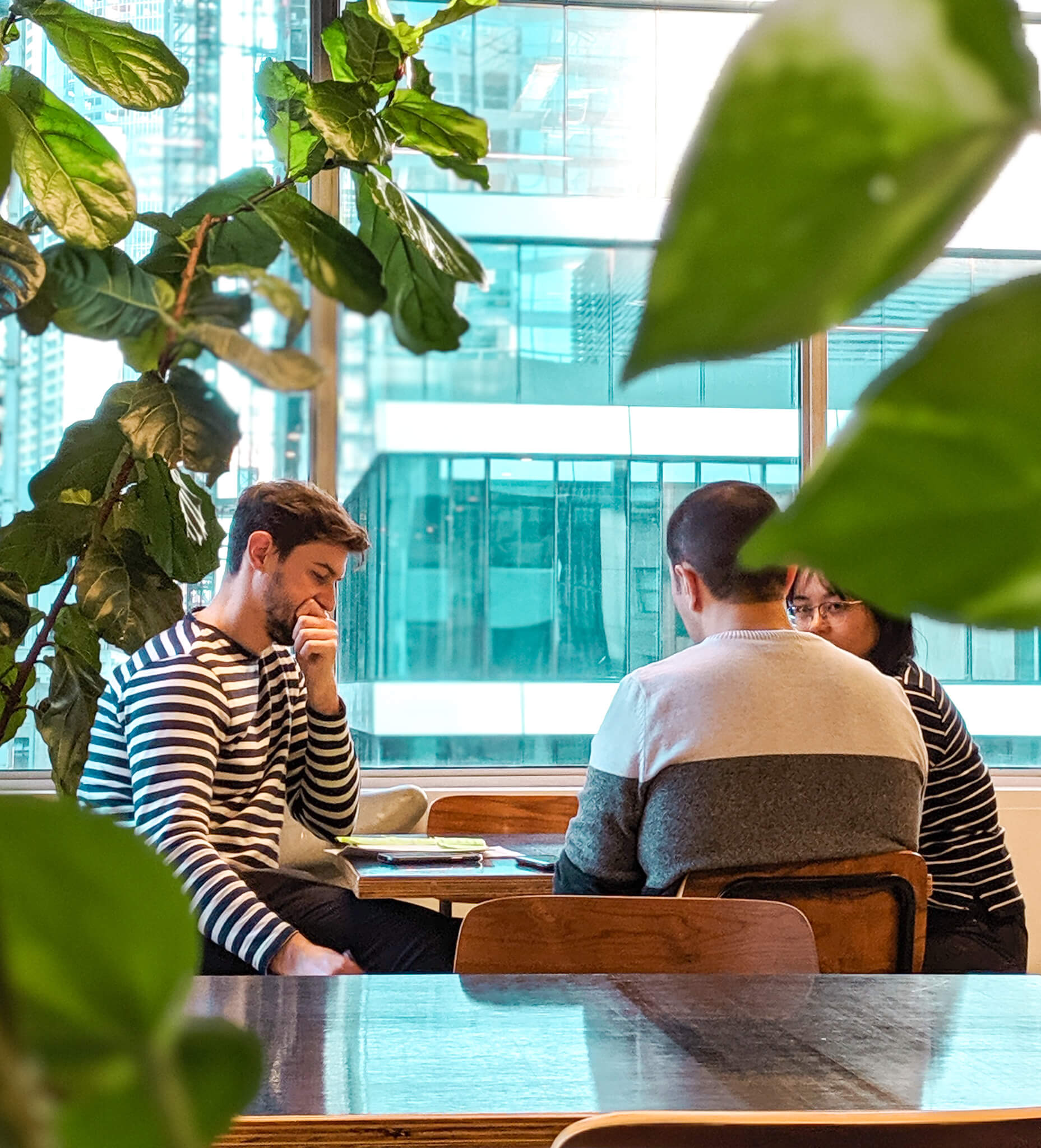 Strategy consulting, group of people, office plants, melbourne office, technical discussion, office sitting area, office with high rise view, office greenery, casual business meeting