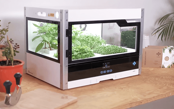 Redesigning the Digital Interface for a Desktop Greenhouse