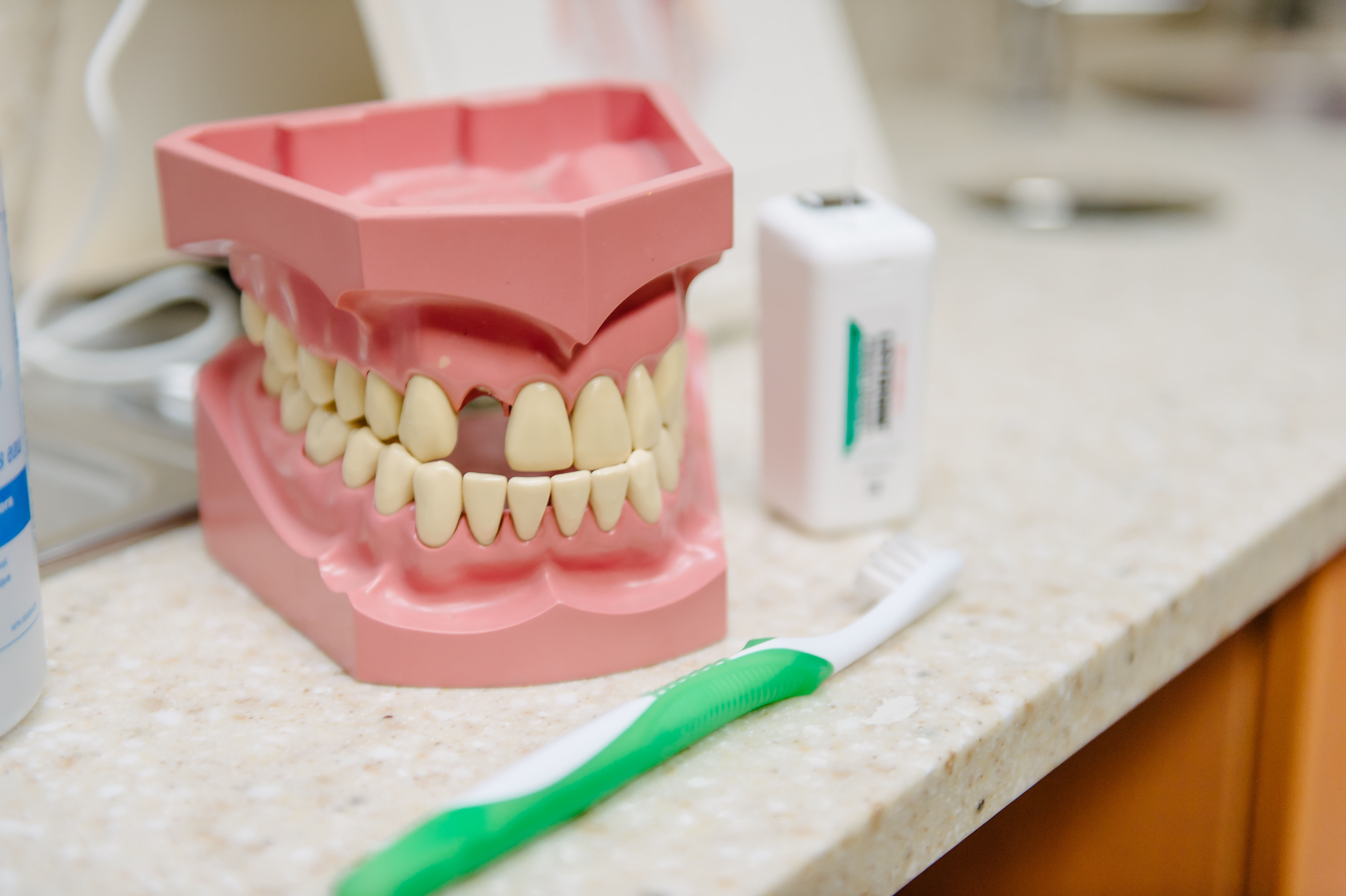 Model of teeth with one tooth missing, sitting beside a toothbrush and floss