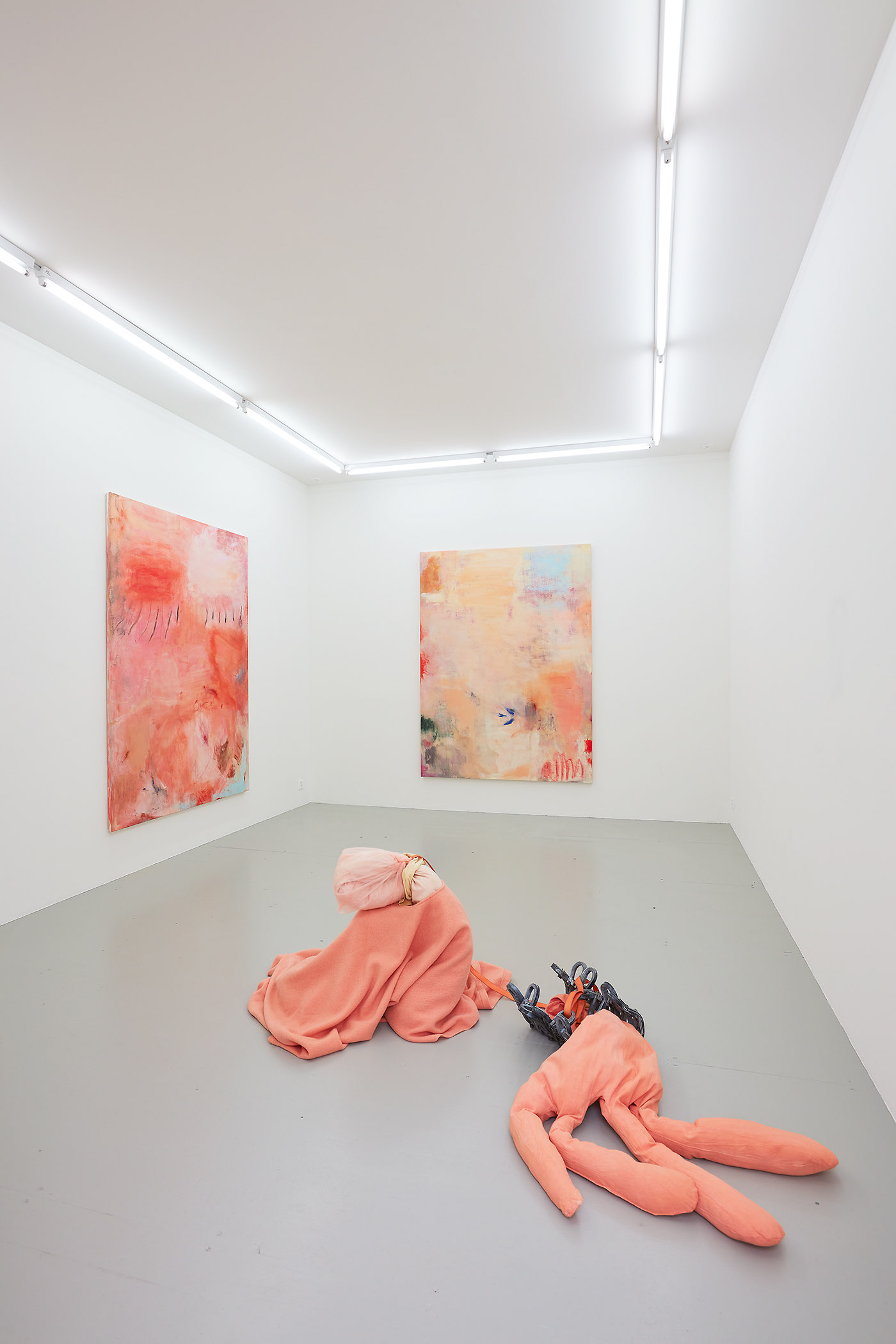 Installation Views: SALTS, Birsfelden Exhibition: TEETH & LIGHTNING Megan Rooney Curated by Samuel Leuenberger Exhibition. Installation shots: Moritz Schermbach Photography Courtesy: SALTS & the Artist