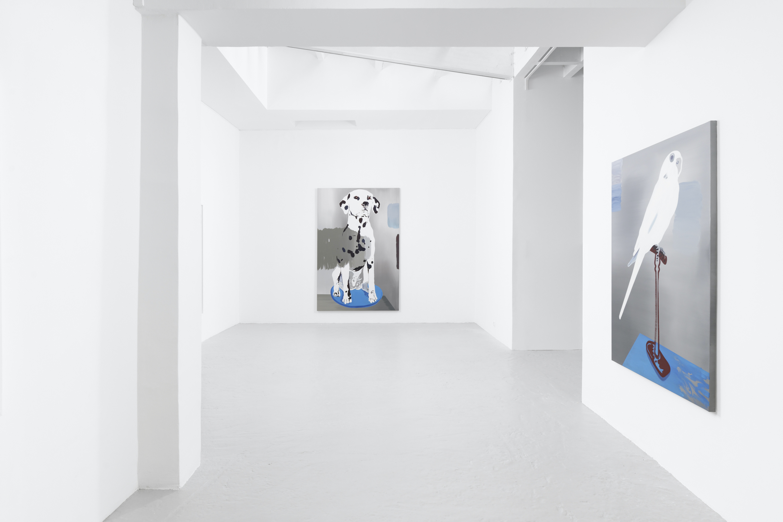 Installation view 1, Forget Me Not, 2020, Courtesy of the artist and Semiose