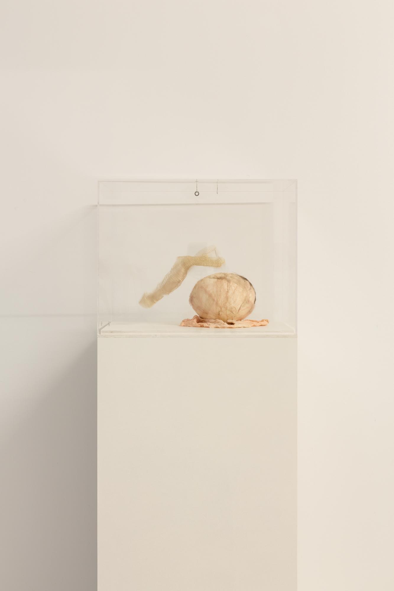 Julia Creuheras Holy Motors Galio, estaño, yeso, motor y chip. (30x20 cm) 2020
