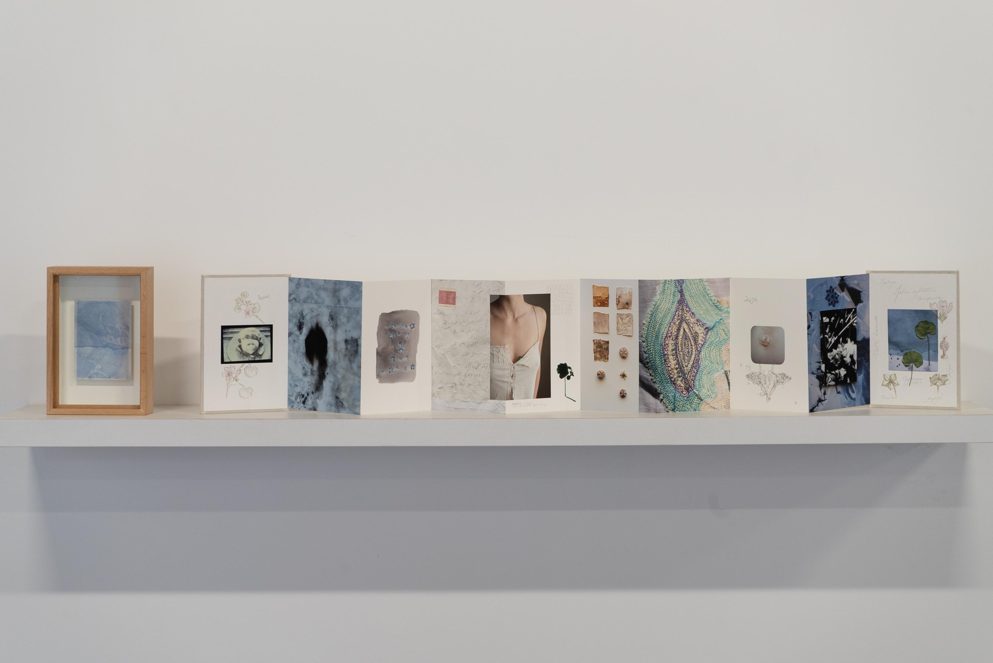 Caroline Tabet & Clémence Cottard Hachem, Secret-Soleils, 2021, Papaver Roheas, Wooden box, 25.5 cm * 17 cm * 6 cm © Dimitri Nassar, Courtesy of Galerie Tanit.