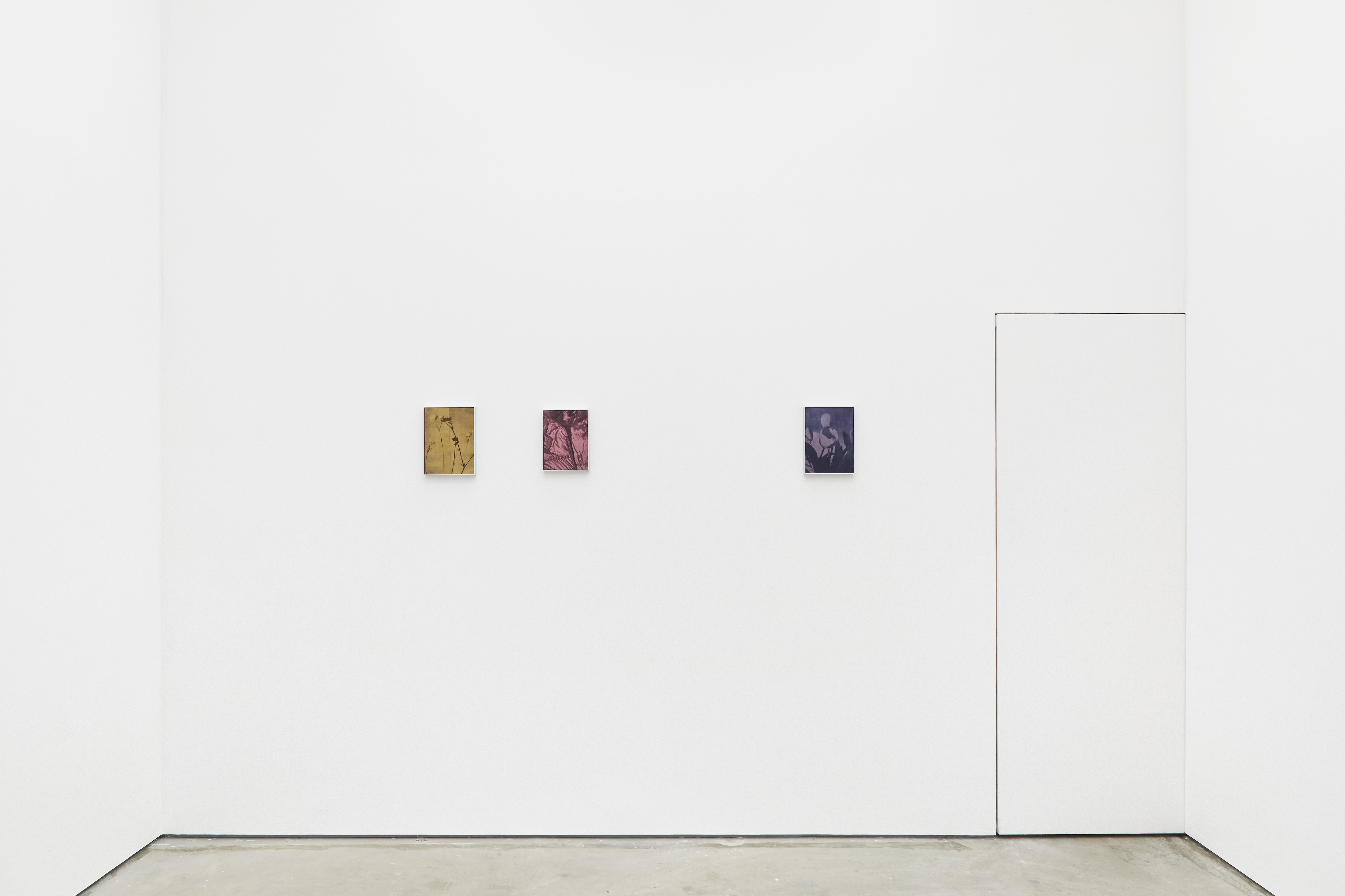 Installation View, Bright Sleep, 2021, South Parade x Painters Painting Paintings, London, Courtesy of the artist and the gallery.