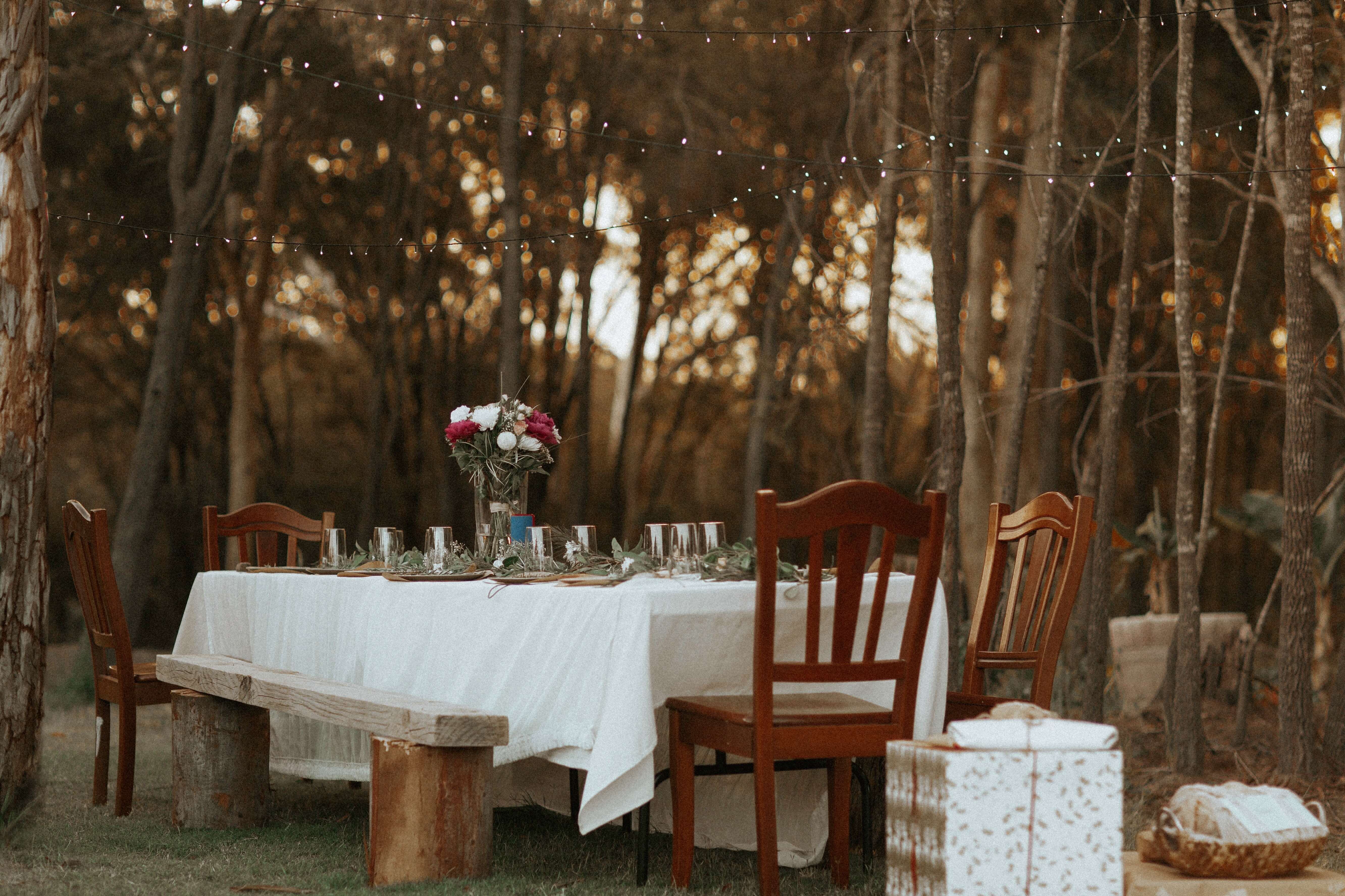 Table set up in the woods under fairy lights