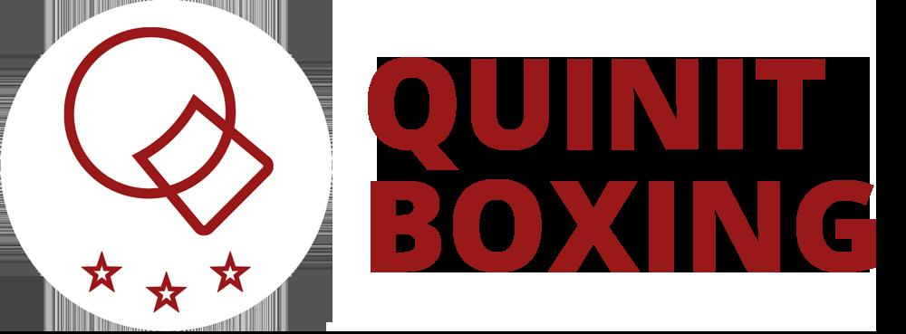 Quinit Boxing Logo