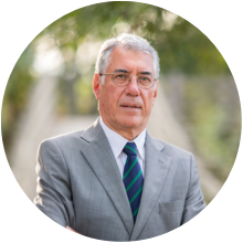 Manuel J. Castelo