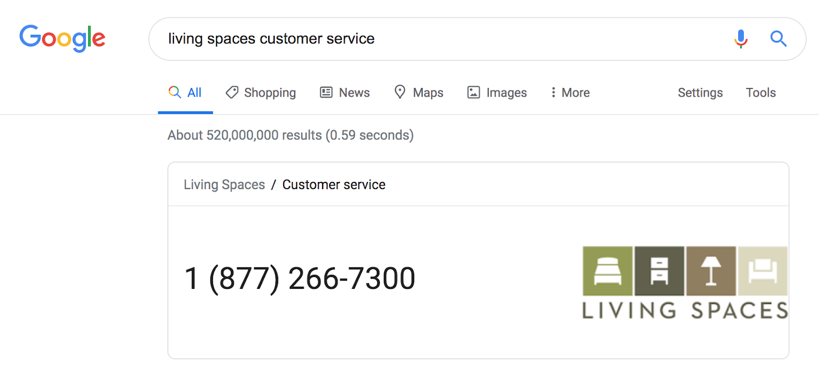 Example Google Result for Customer Service