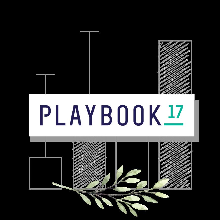 Playbook 17