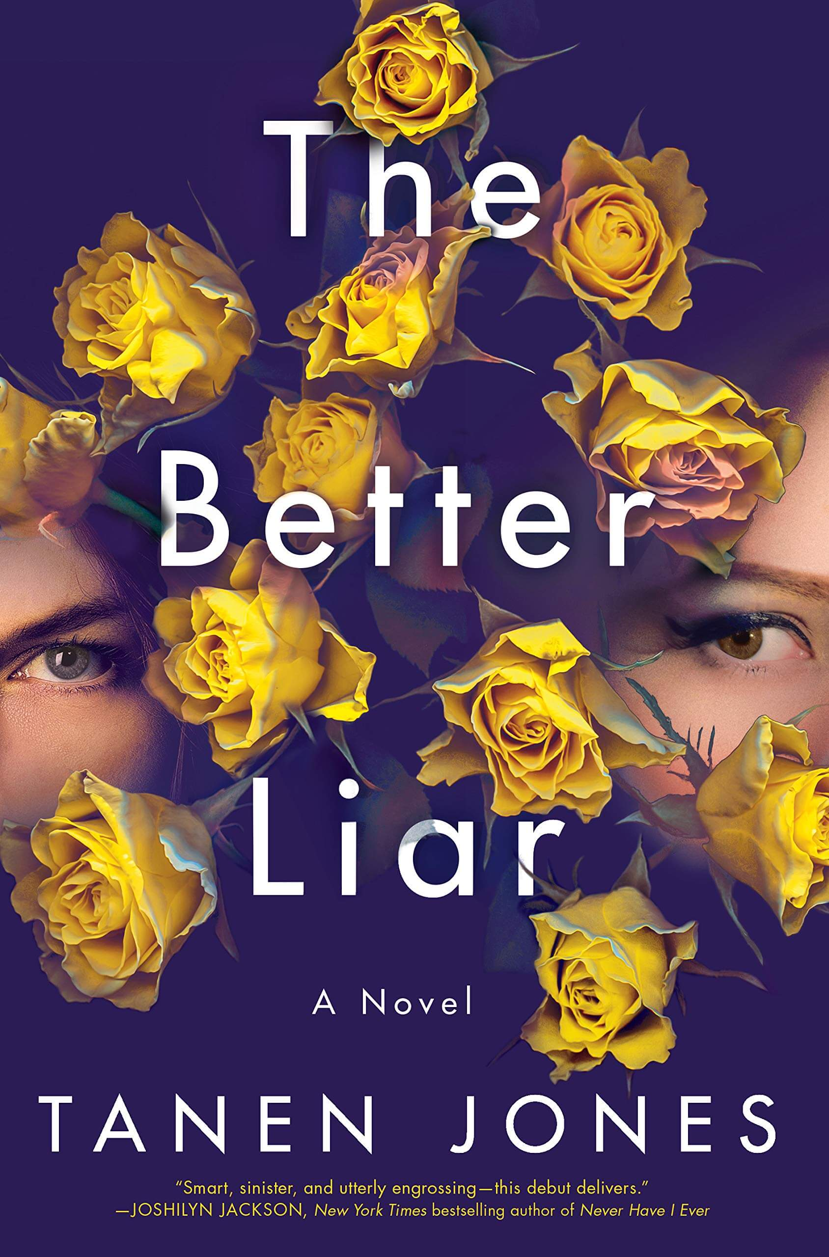 The Better Liar Book Cover