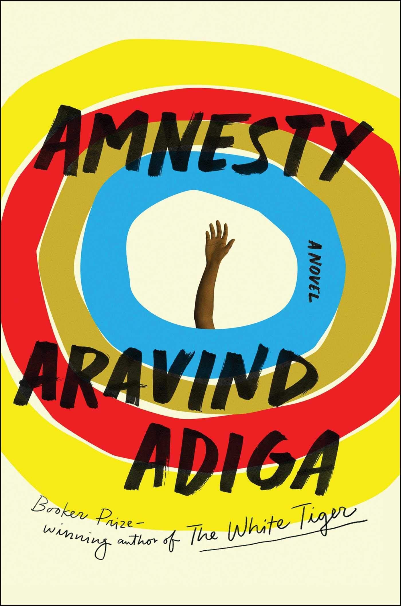 Amnesty Book Cover