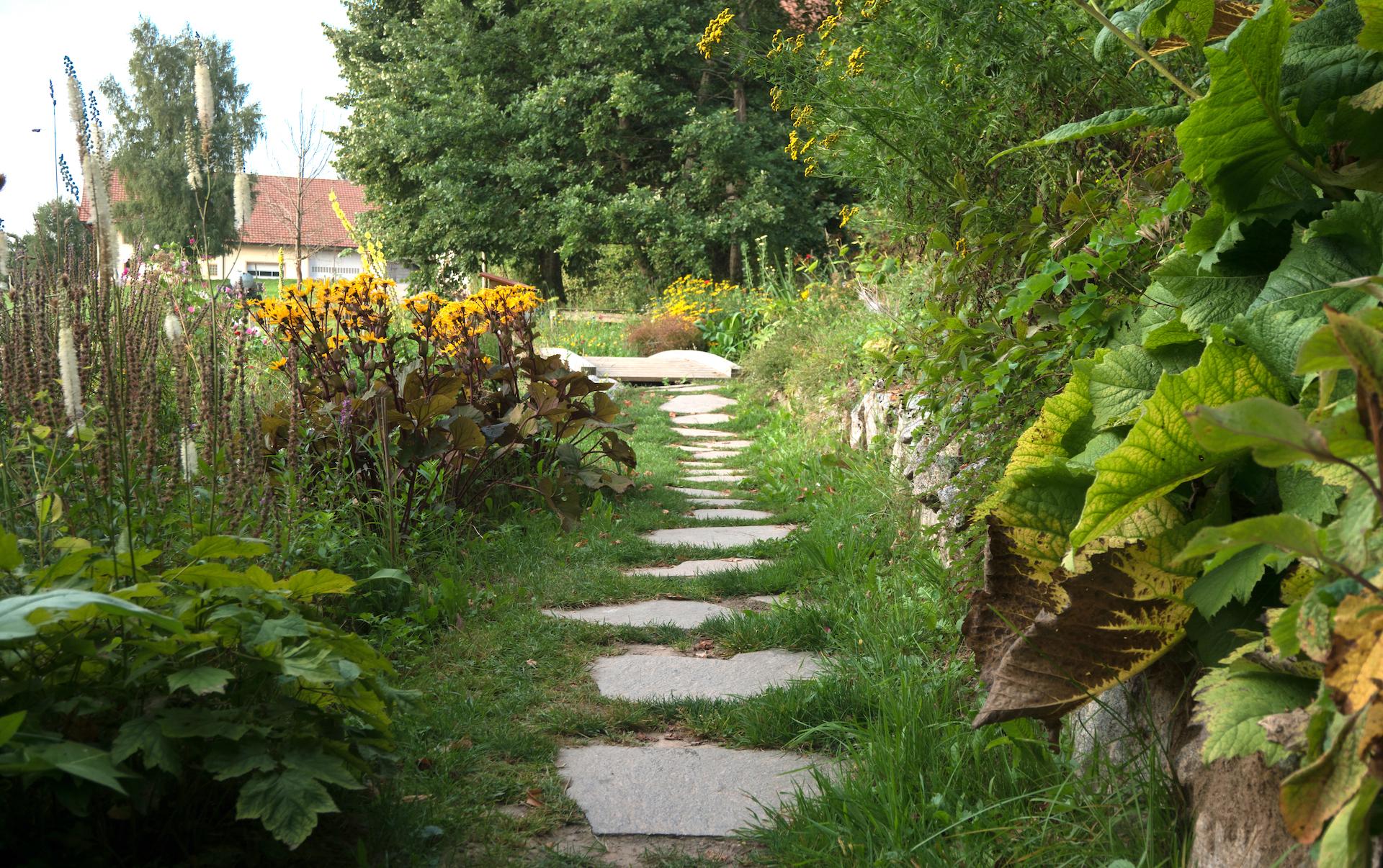 Zen Zentrum Schwarzwald Meditation Zazen Dharma Sangha