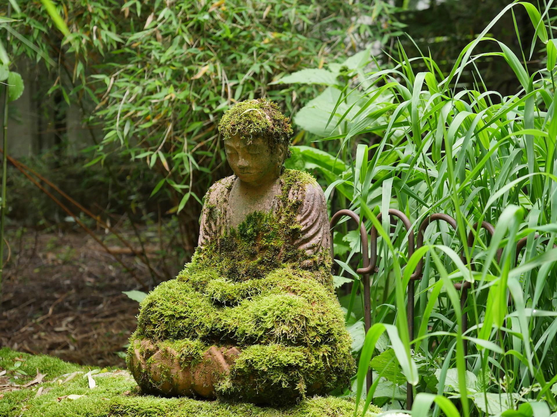 zen zazen meditation johanneshof hotzenhaus dharma sangha baker roshi buddhismus