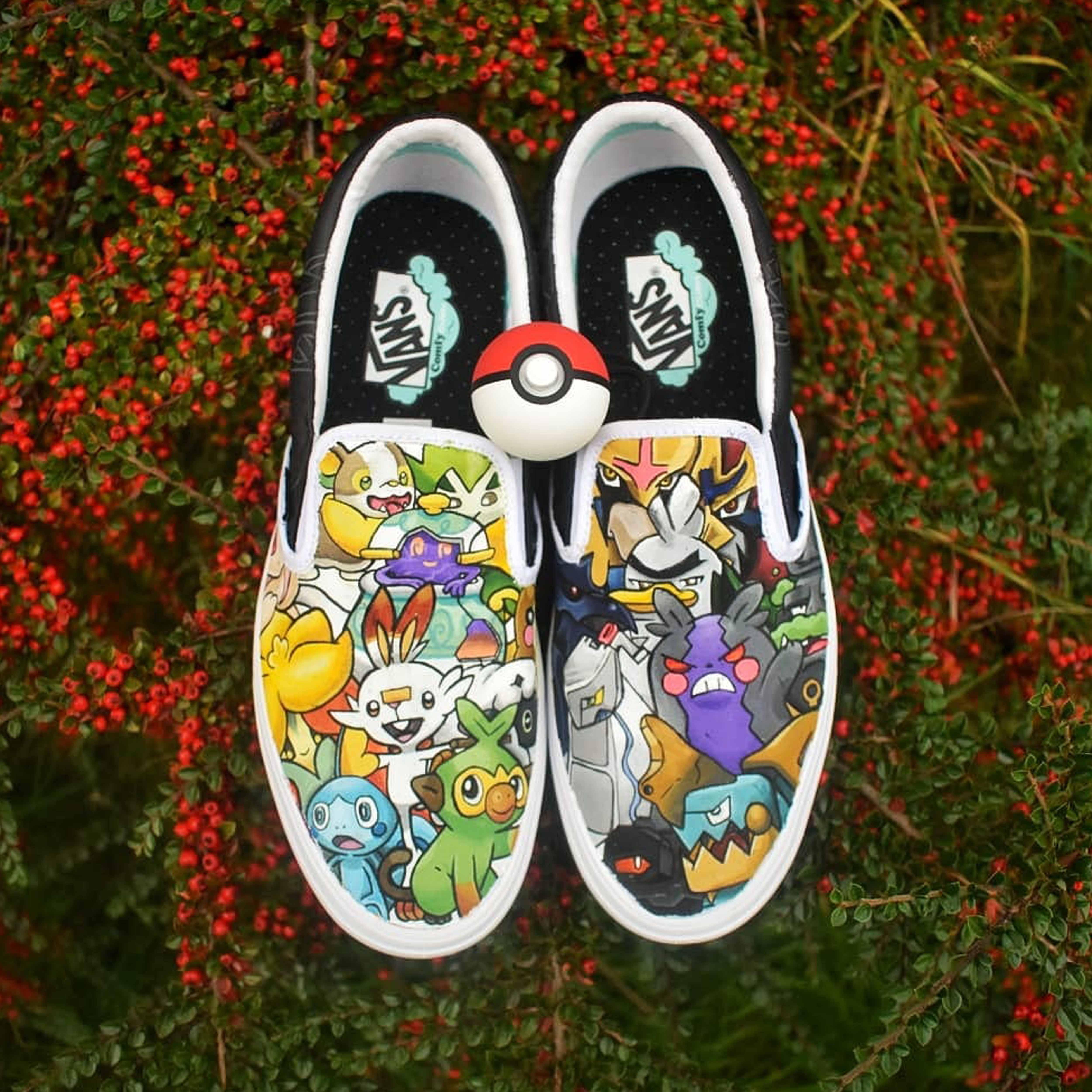 Pokemon Sword and Shield Vans
