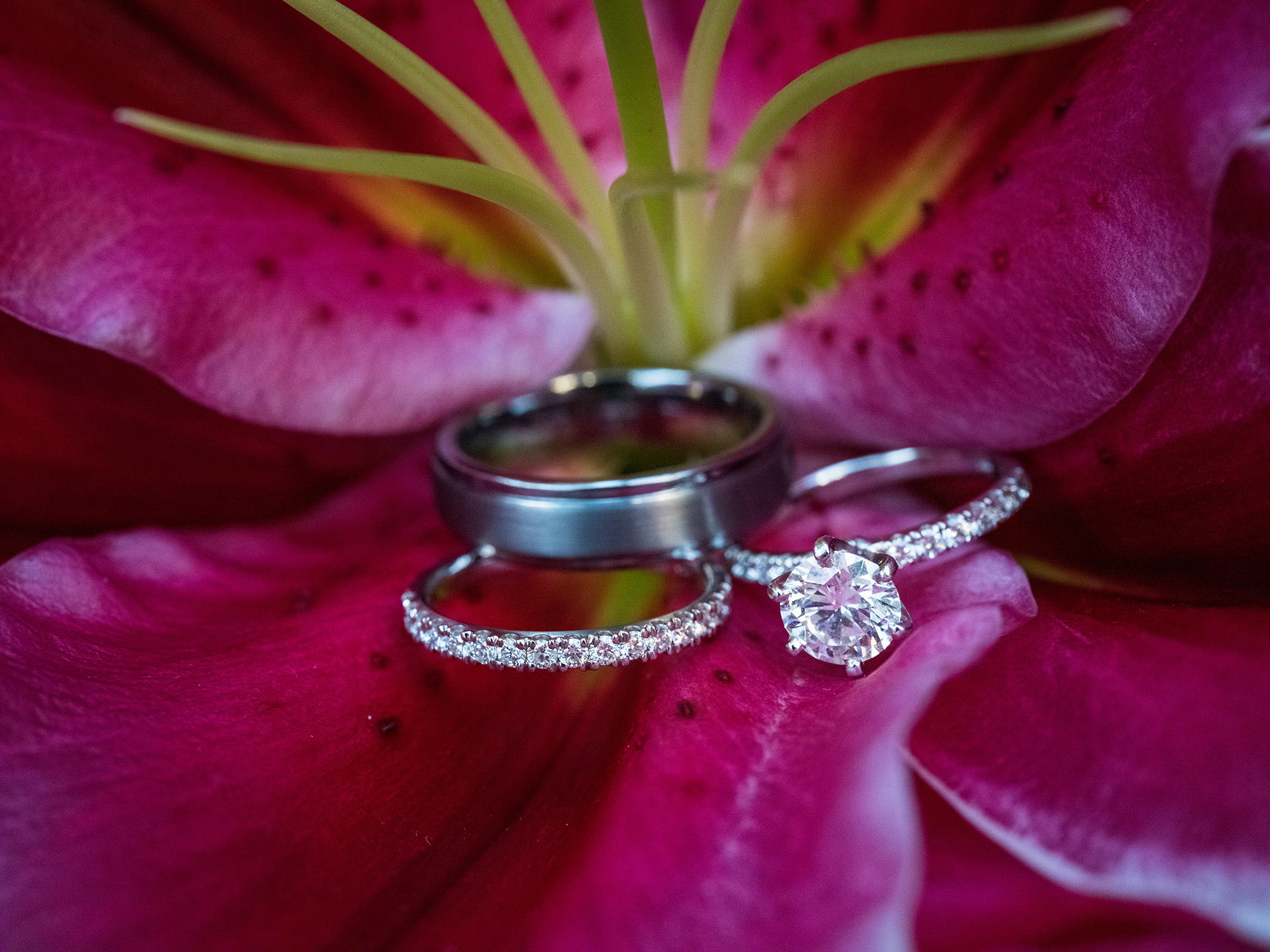 Pittsburgh Wedding Photographer Marriott Airport Rings Flowers