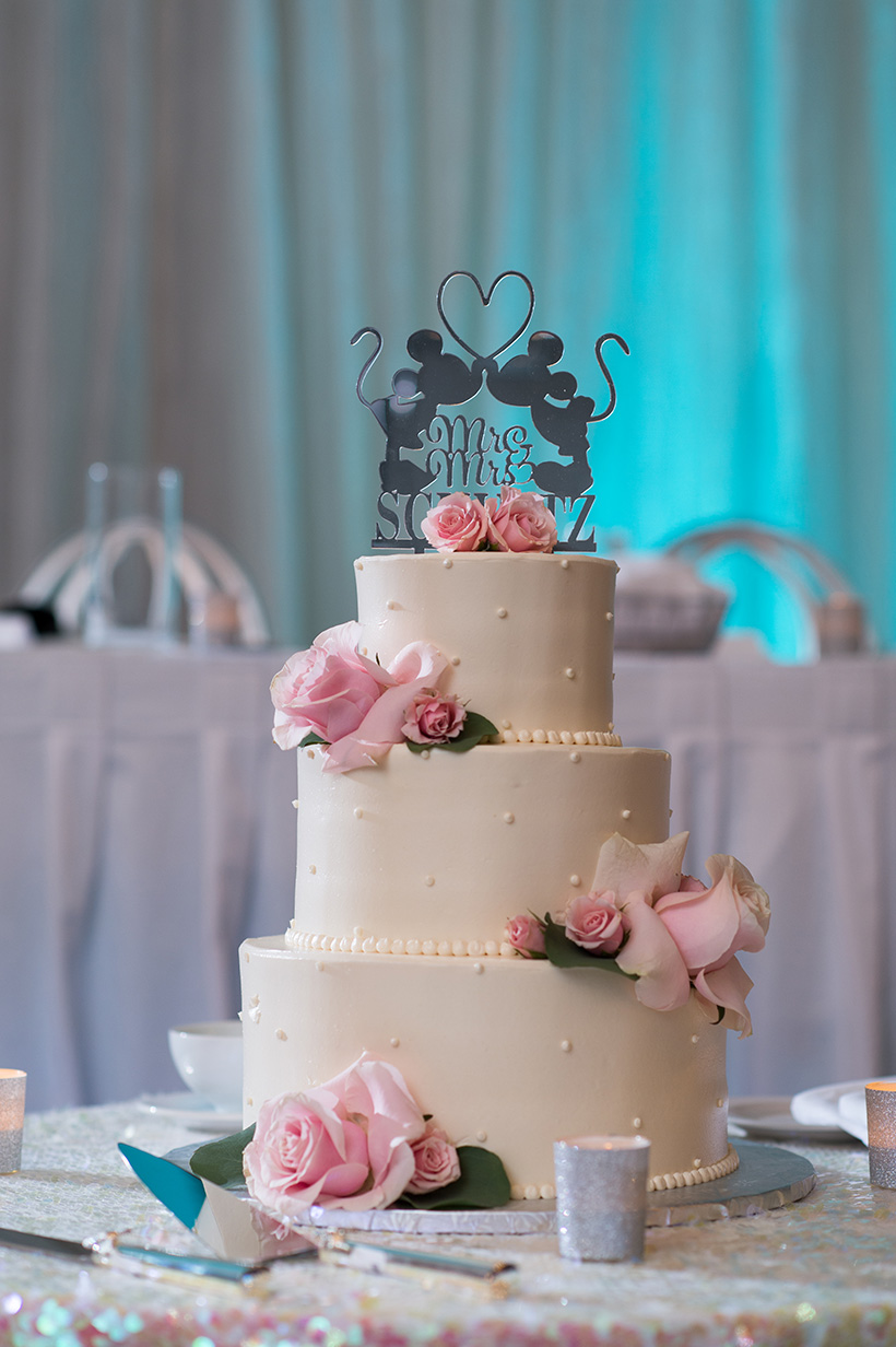 Pittsburgh Wedding Photographer Marriott Airport  Cake