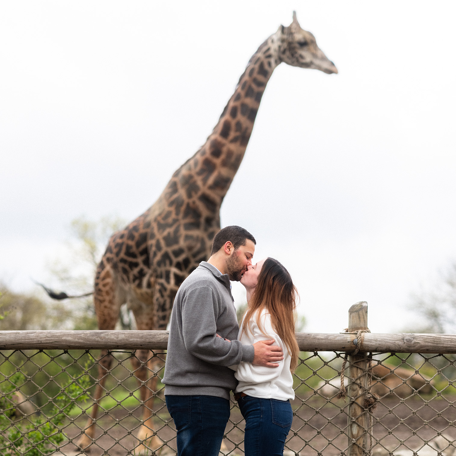Pittsburgh Zoo Aquarium Engagement Photographer