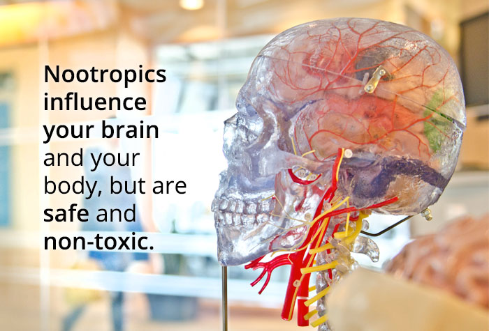 nootropics are safe and non-toxic