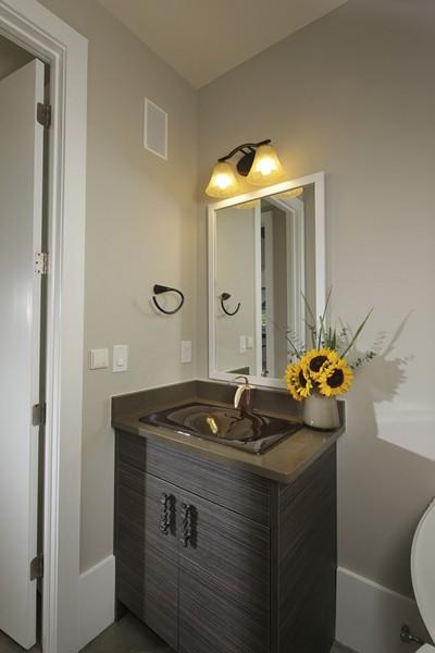 100556-serenbe-lane-contemporary-interior-powder-bath-atlanta-lg-squared-inc-proud-green-home