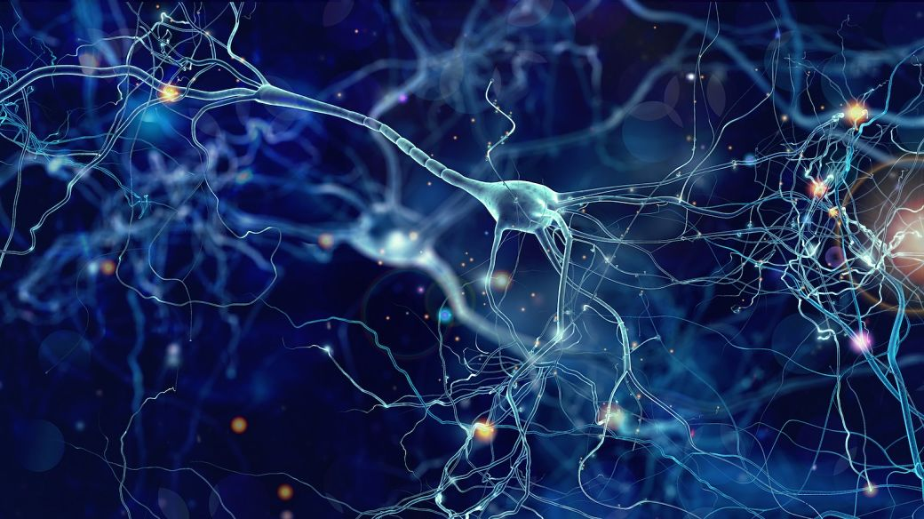 Stem cell therapy for ALS in 2021